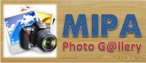 Gallery MIPA